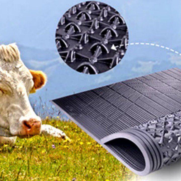 DB Podloge za tov krava   Gumene Podloge   Lezista   Antiklini  