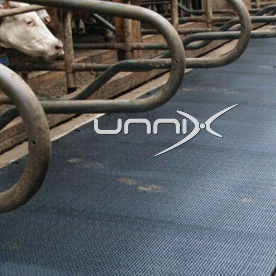 Gumeni podovi za krave muzare, prostirke,lezista:Bikove;5 godina grancije